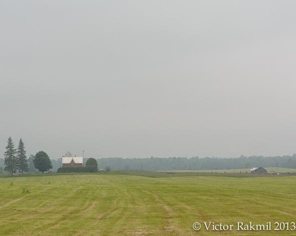 Farmland-5