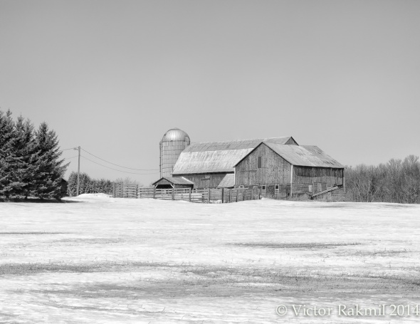 B&W Farm