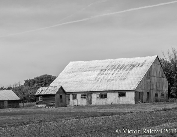 Farmland in Black and White 3