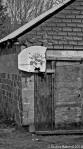 Back Alley-3