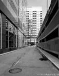 City Landscape-2