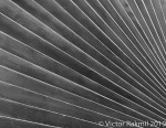 An Abrstract Abstraction-2